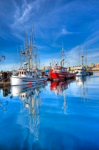 Fishing Boats Moored At Fisherman's Wharf in Victoria, BC